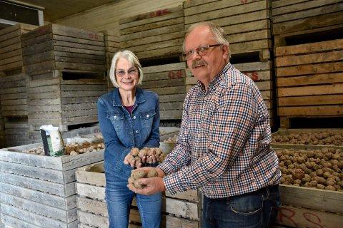 45 TONN: Det er poteter fra gulv til tak hos gårdbrukerparet Hilde Bendz og Otter Riis Strøm på Store Vaker gård på Ringerike.