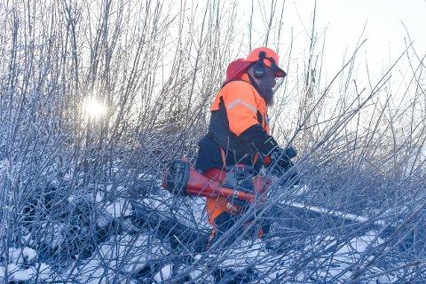 FJERNER BUSKER: Kim Engevoll på jobb like sør for Eidsalm gård, der han rydder unna buskas under ei høgspentlinje.