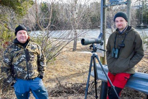 LETER ETTER FUGLER: Richard Hals Gylseth og Marius von Glahn ved kikkerten som brukes til å finne fram til det varierte fuglelivet i distriktet.
