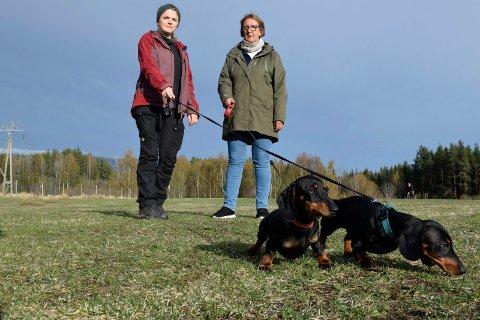 SØSKEN: Hundene Maja og Mia er søsken og koser seg på valpetreff sammen med de andre hundene.