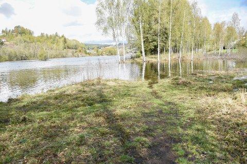 FLOMSTOR ELV: Her kan du vanligvis gå i idylliske omgivelser langs Begnaelva. Nå trengs det vadestøvler eller båt for å komme trygt over.