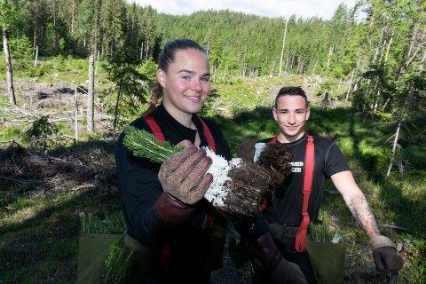 JORDNÆR JOBB: Lokale ungdommer redder plantesesongen i skogen. Maja Tryterud fra Sokna og Tobias Vinjevoll fra Hønefoss liker sommerjobben.