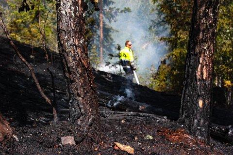 BRANN: Torsdag brant det i skogen i Oppenåsen.  Brannvesenet minner om bålforbudet i utmark.
