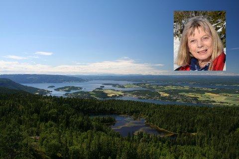 KLARERE: Turid McAdam mener at Ringerike kommune burde ha stilt klarere krav til Forsvarsbygg. Utsikten fra Gyrihaugen er formidabel.