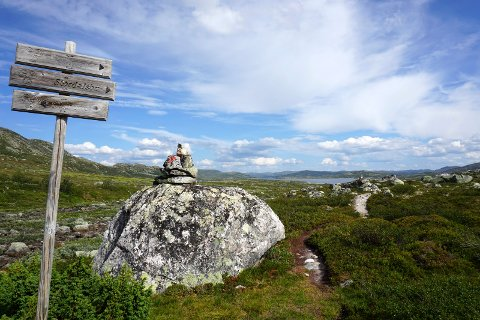 Stien som går fra Kalhovd til Stordalsbu og så til Mogen er blant de en kan velge å bli stifadder for.
