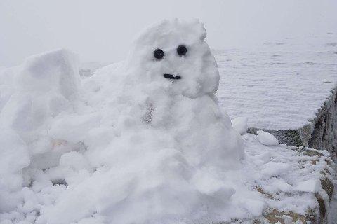 SNØ;MANN: Årets første snømann er observert på Gaustatoppen søndag, laget av Ronny Anderson i snødrevet.