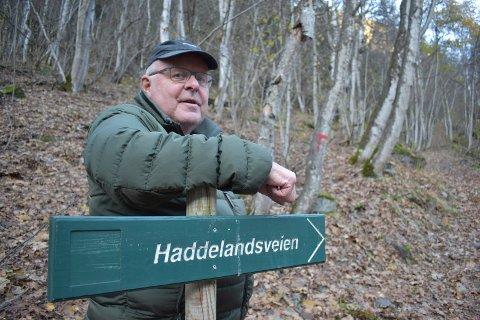 SIKRING: Pensjonert ingeniør Gunnar Undersrud mener utstrakt skogplanting kan stabilisere lia bak Skriugata mot steinsprang og mindre ras - dessuten er det rimeligere enn stålnett til nærmere 20 millioner kroner. Her fra lia som går parallelt med Skriugata.(arkivbilde)