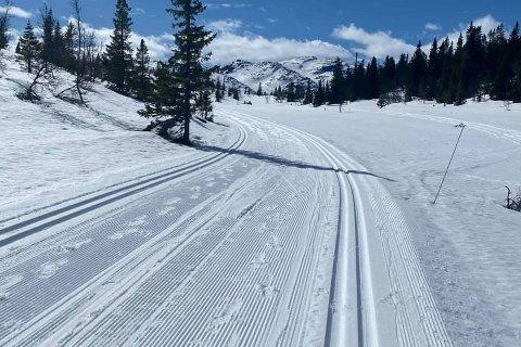 NY OPPKJØLRING FREDAG: - Vi har besluttet at vi kjører Svartdal-løypa fredag kveld så den er klar til skiløpere i helgen, opplyses det fra Gaustaområdet.