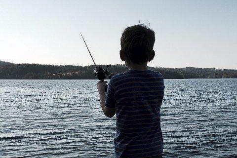 KVIKKSØLV PÅ KROKEN: Mye av fisken i innsjøer og vassdrag på Romerike inneholder betydelige mengder kvikksølv. FOTO: JON THEODOR HAUGER-DALSGARD