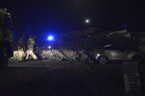 To trær blåste natt til tirsdag ned over veien i Granhaugsvingen på Råholt. Det ene treet knuste bakruta på en bil som sto i nærheten.