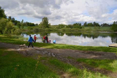 Området ved Raknehaugen kan være et aktuelt sted for samlokalisering av Ullensaker museum og det planlagte Raknehaugr kulturhistoriske senter.