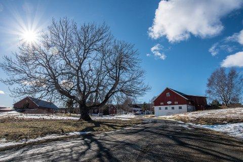 Eierne gjør et nytt forsøk på å selge Trugstad gård i Nannestad.