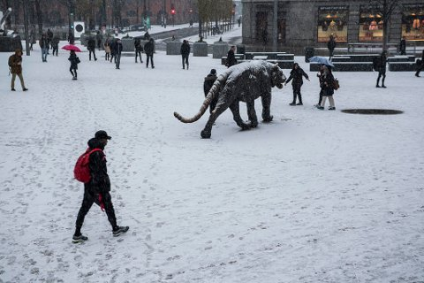 SNØ: Årest første snøfall i hovedstaden kom 14. november - datoen da det statistisk faller snø første gang i sesongen. En dansk prognos tyder på at årets vinter kan bli av den kaldere varianten. Foto: Mariam Butt (NTB scanpix)