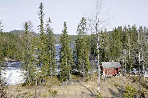Kanskje vern? Ryggevannene kan havne i et nytt naturreservat. Her fra søndre ende av Nordre Ryggevann. I bakgrunnen til venstre ses Prekestolen, Gjerdrums høyeste topp. Foto: Rune Fjellvang