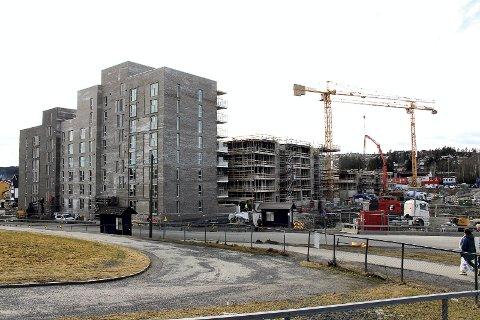 PÅGÅENDE PROSJEKT: Skårer syd er under utbygging. Foto: Torstein Davidsen
