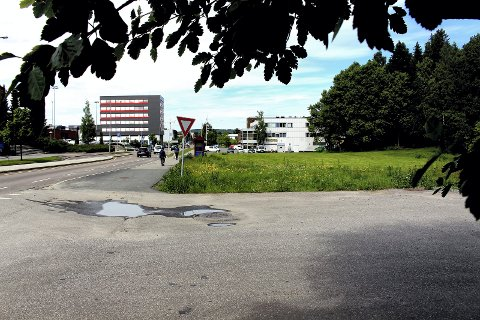 MIDLERTIDIG LØSNING: Deler av kommunens tomt på Skårersletta 70 skal gjerdes inn og brukes som lufteområde for hunder i inntil to år. Foto: Torstein Davidsen