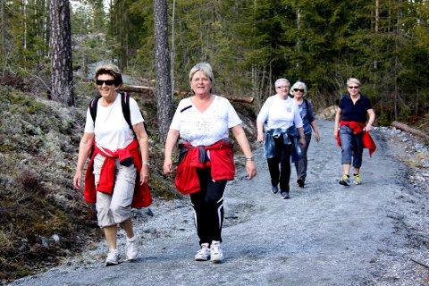 FOLKEHELSE: Nes kommune setter pris på folkehelse. Her er spreke Nes-kvinner på tur til Dragsjøhytta.