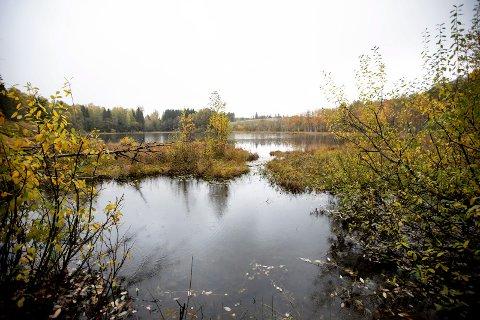 VERNET: Elstad landskapsvernområde, som blant annet avbildede Bakketjernet er en del av, vil påvirkes av byggingen av en tredje rullebane på Gardermoen. (Foto: Lisbeth Lund Andresen)