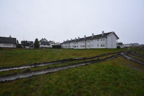 Lillehaugen borettslag: De 18 boligene i Lillehagen borettslag er blant boligene som rådmannen foreslår å kjøpe ut.