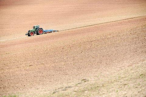 FÆRRE OG FÆRRE: For første gang er det under 40.000 aktive bønder i Norge, viser tall fra søknader om produksjonstilskudd til Landbruksdirektoratet.