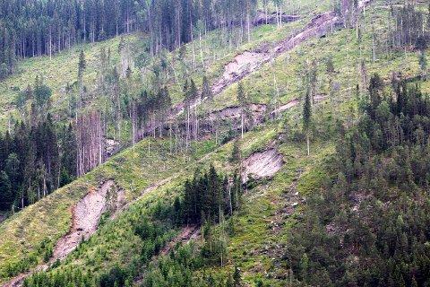 HEVET NIVÅET: NVE varsler om økt fare for jordskred de neste dagene. ILLUSTRASJONSFOTO: SCANPIX