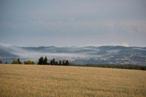 TYKK RØYK: Røyken ligger tykt over Rælingen og Flateby etter skogbrannen tirsdag. Lite vind gjør at den ikke driver vekk med det første.