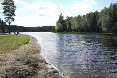 Hold munnen lukket: Både på Veslesjøen i Nes og på Stensbydammen i Eidsvoll bør du unngå å få i deg vannet. Foto: Per Stokkebryn