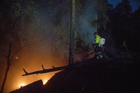 OMKOM: En mann i 30-årene fra Eidsvoll omkom mens han arbeidet ved skogbrannen i Nes. Her er en av hans kolleger avbildet under slukningsarbeidet. Foto: Raymond Aaserud