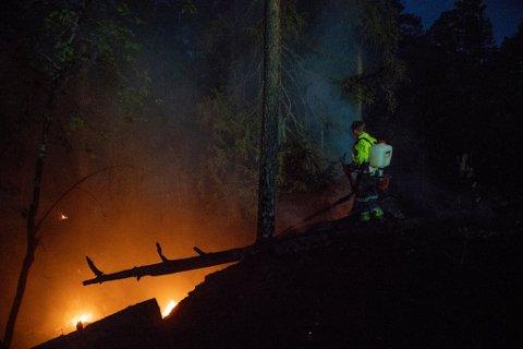 SKOGBRANN: Fredag 13. juli 2018 oppsto det en skogbrann i Auli i Nes. Brannmannen Robert Odden omkom etter å ha fått et illebefinnende under etterslokkningsarbeidet.