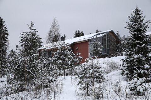 I SKOGKANTEN: Moderne arkitektur i mur, glass og lerk. Vinduene til høyre rommer vinterhagen.