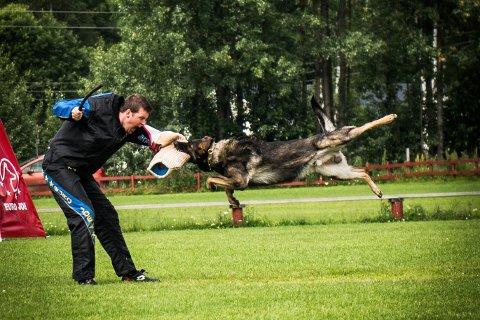 FIGURANTARBEID: Dette bildet fra NM for schäferhunder på Maura sommeren 2013 viser samspillet mellom hund og figurant i øvelsen forsvarsarbeid.