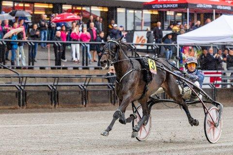 Hillary B.R. utklasset konkurrentene i hoppeavdelingen av Jarlsberg Grand Prix og tok sin 13. seier på like mange starter i karrieren. Foto: Eirik Stenhaug, Equus media / NTB scanpix