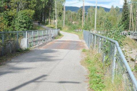 Hva skjuler seg under denne broen over Sagfossen i Hakadal? I alle fall er det et faktum at oppstrøms er det godt med kreps, mens nedstrøms finnes ikke en eneste kreps.