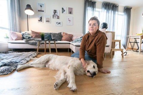 HOLDT PÅ Å DØ: Fire år gamle Tico holdt på å dø han plutselig fikk akutt blodig diaré og oppkast. Hundeeier Anne Godding er takknemlig for at veterinærene klarte å redde han.