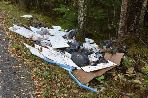 STORE MENGDER: Langs veikanten ligger blant annet flere sponplater og søppelsekker henslengt.