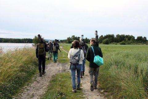 POPULÆRT: Årnestangen i Rælingen er et populært turmål og nå er trekkfuglene på vei inn. Svært mange bruker dagene nå til å ta en tur ut dit. Nå er Nordre Øyeren Fuglestasjon bekymret for at folk går der de ikke skal gå. Dette bildet er tatt før koronautbruddet.