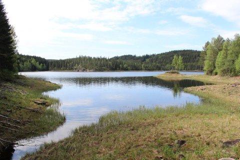 POPULÆRT: Idylliske Fløyta brukes av ivrige badenymfer gjennom hele sommeren. Foto: Rune Fjellvang