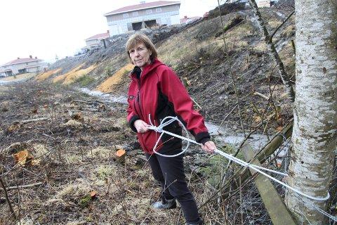 PROTEST: Bozena Rasmussen, siden leder for «Aksjon sikkerhet Ingelstun», truet med sivil ulydighet for å få stanset trefellingen på Ask i april 2016.