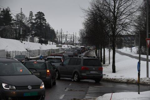 LANGE KØER: Mange var lystne på en tur til Strømmen storsenter lørdag.