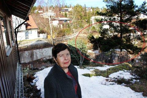 FORBANNET: Grethe Li bor bare meter unna byggetomta Oscar Wistings vei 10 på Fjellhamar, der det har pågått sprengning i seks uker. Hun er sterkt kritisk til at naboene ikke er informert om omfanget av utsprengningen.