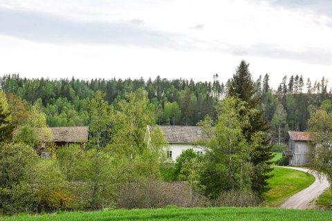 VESTRE BUNES: I 2020 skrev RB at etter planen skal låven til venstre og kårboligen til høyre rives, mens det hvite hovedhuset skal bevares. I forkant skimtes taket på saga ved elva. Den er planlagt bevart. Foto: Anne Enger Mjåland