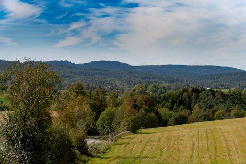 STORT: Området kan få et stort naturreservat innen nyttår