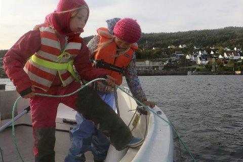 STÅR PÅ: Alva Love Gustavsson og venninnen Åsta Aasland Lindstad jobber hardt under hummerfiske. Alva har sågar sine egne to teiner: – Jeg har spart et år, sier hun.