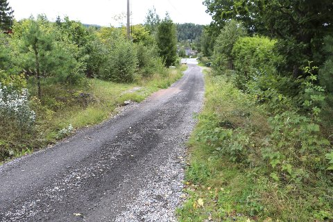 VEI: Veien opp til Fiskekroken skal oppgraderes i tillegg til at det skal anlegges ny vei. Det har skapt debatt og flere grunneiere forsøker å unngå ekspropriasjon.
