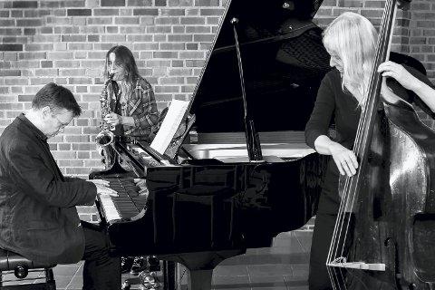 KRUPKA TRIO: Jazztrioen Krupka Trio består av Ulf Krupka på orgel og piano, Line Falkenberg på saksofoner og Tine Asmundsen på kontrabass. Onsdag spillere de jazzversjoner av salmer i Slemmestad kirke.