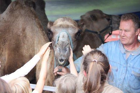 ØSTENS KARAVANE: I starten var barna litt skeptiske til å klappe de store dyrene, men de klarte ikke å dy seg til slutt. Foto: Sevda Barazesh