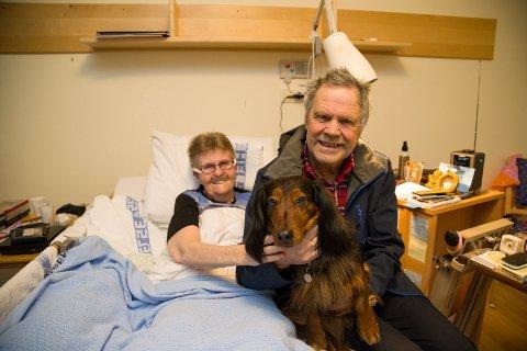 LETTET: Grete og Jan Klopbakken er lettet over at det gikk bra med deres seks år gamle dachs Ricco, men håper å få kontakt med eier av hunden som gikk til angrep på han.