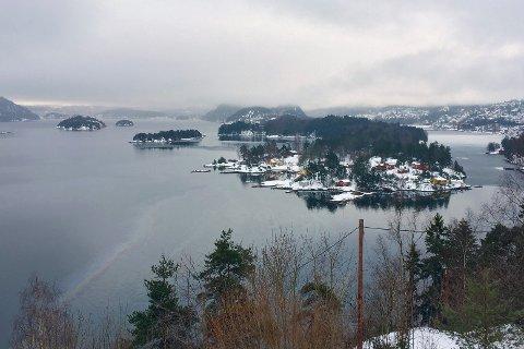 OLJESØL I FJORDEN: torsdag ettermiddag ble det oppdaget et oljebelte som strakk seg fra land og ut mellom Gråøya og Killingholmen på grensa mellom Åros og Sætre.