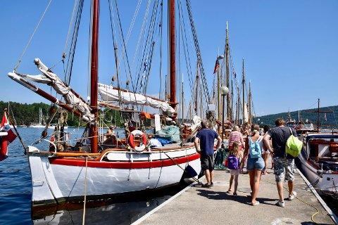 I FJOR: Hurum Trebåtfestival 2018 hadde alt man kunne ønske seg, vind sol og varmt vær i hyggelige omgivelser.