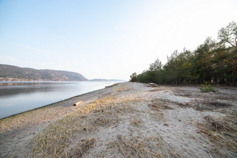 INGEN ENDRING: Svelvik kommune går for å beholde Verksøya, selv om Hurum ønsker å overta den gratis.